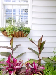 The pair filled their plot of land out front with tropical fauna and oh-so Charleston window boxes